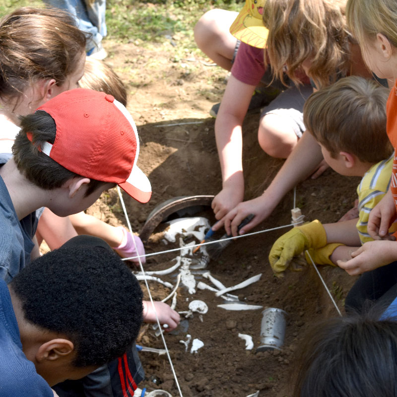 Cultures in Contact: Archaeology